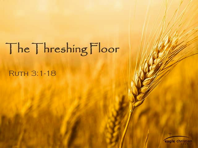 Trust in god the turtle 39 s voice the tribulum and the for Threshing floor
