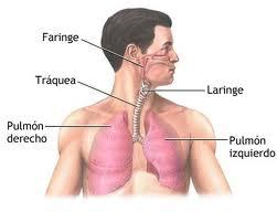 Solutii sigure pentru faringite si laringite