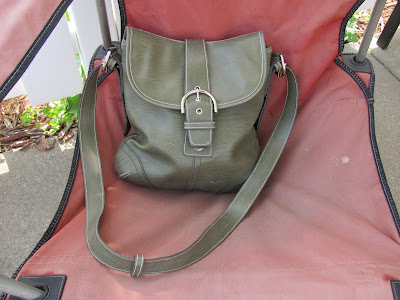  Earth Tones Green Purse