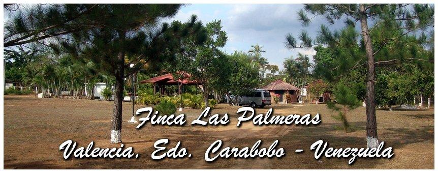 Fincas Las Palmeras