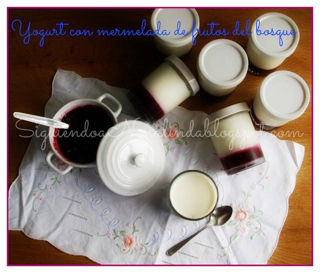 yogurt con leche entera: