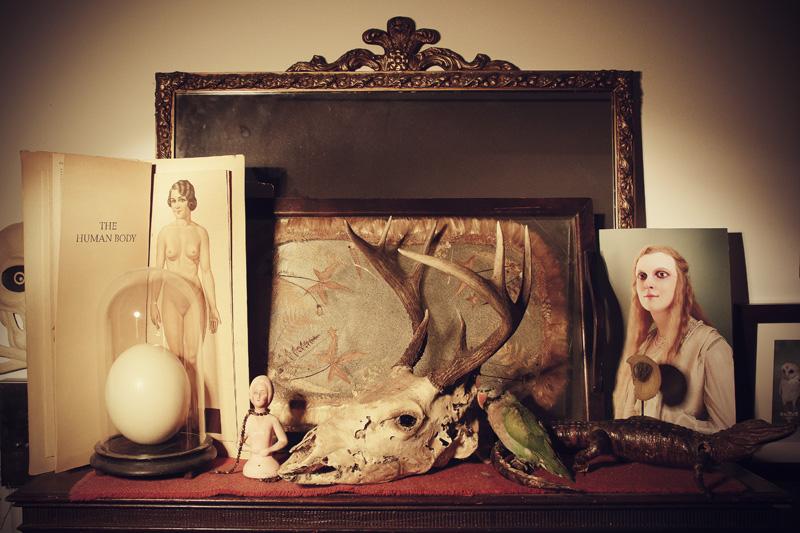 Morbid anatomy library