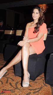 Bipasha Basu Latest  Pictures at CCL 3 (Celebrity Cricket league 2013) Press Meet  0001