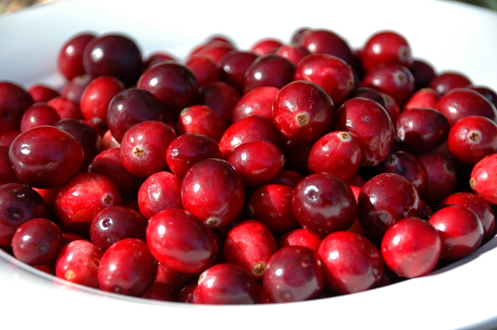 Life love lauren fresh cranberry sauce for What to make with fresh cranberries