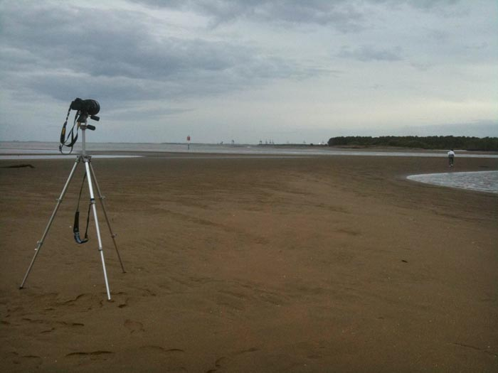 Mangroves Storm Clouds Mosquitoes Fading Light The Wait To Photograph Rhapsody Of The Seas Begins At Low Tide On The Mudflats At Nudgee Beach