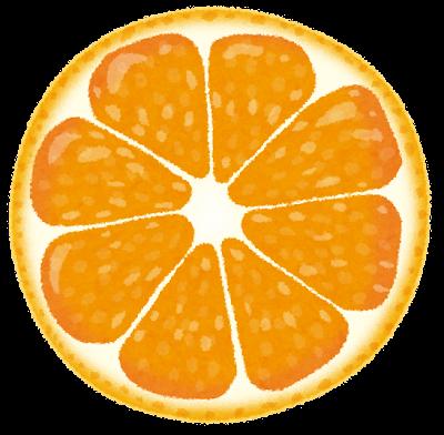 オレンジ・みかんの断面のイラスト