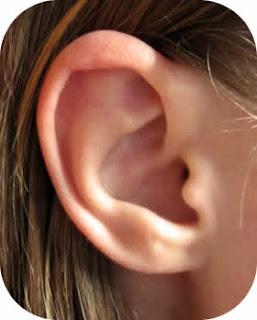 ماذا تفعل عند دخول جسم غريب فى الأذن ؟؟