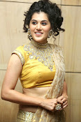 Taapsee Pannu Photos Tapsee latest stills-thumbnail-40