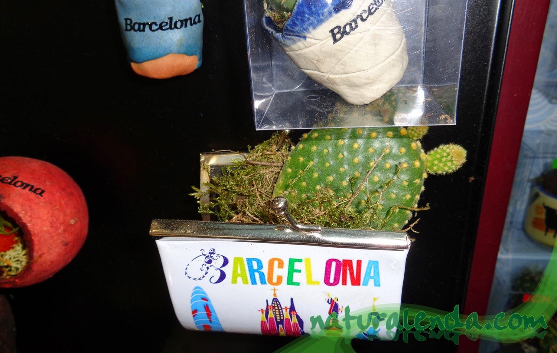 cartera con cactus