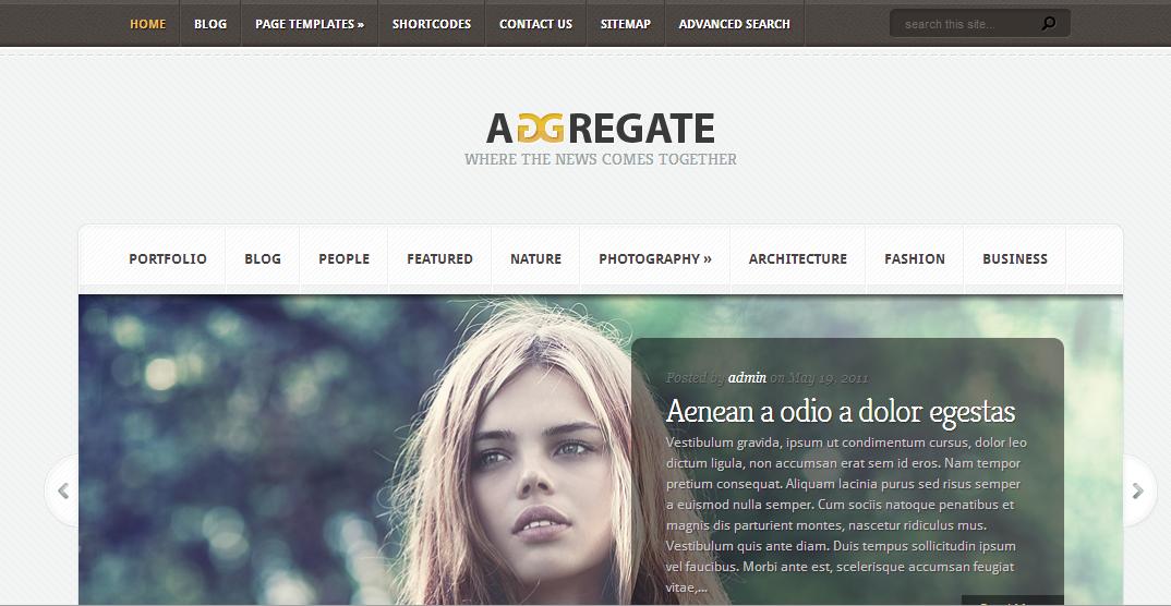 download adgregat wordpress template