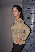 Divya Singh Photos at Just Business Audio-thumbnail-16