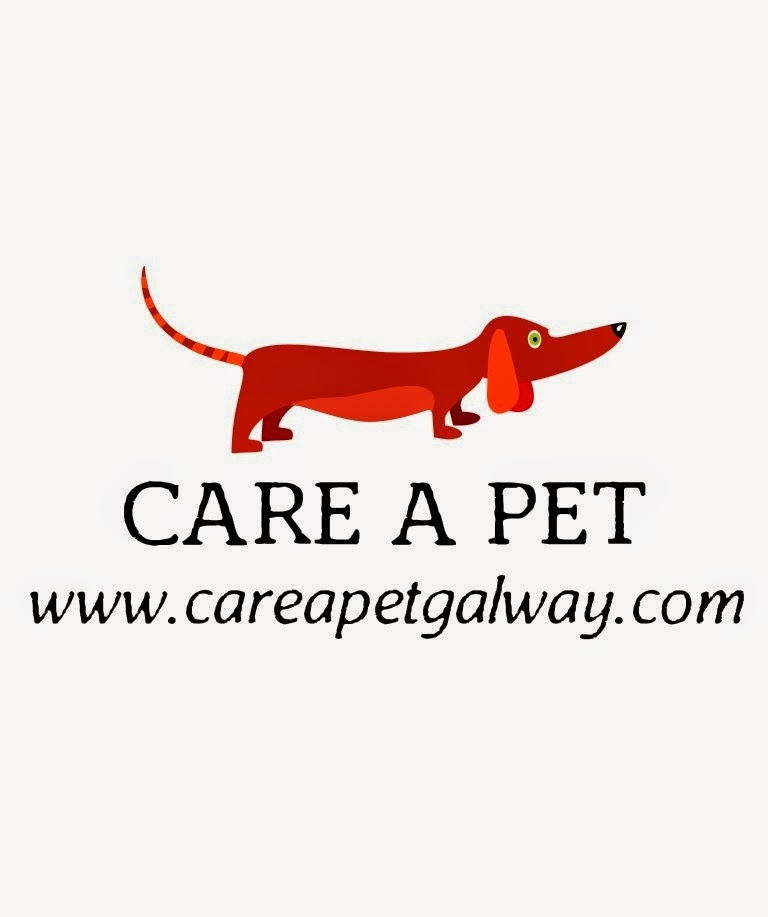http://www.careapetgalway.com