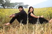 Teeyani Kalavo Movie Photos-thumbnail-12