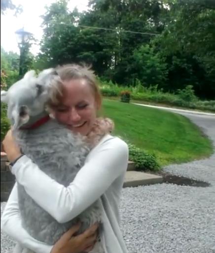 Perro se desmaya de emoción