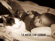 LA MICIA CHE DORME by Francesca