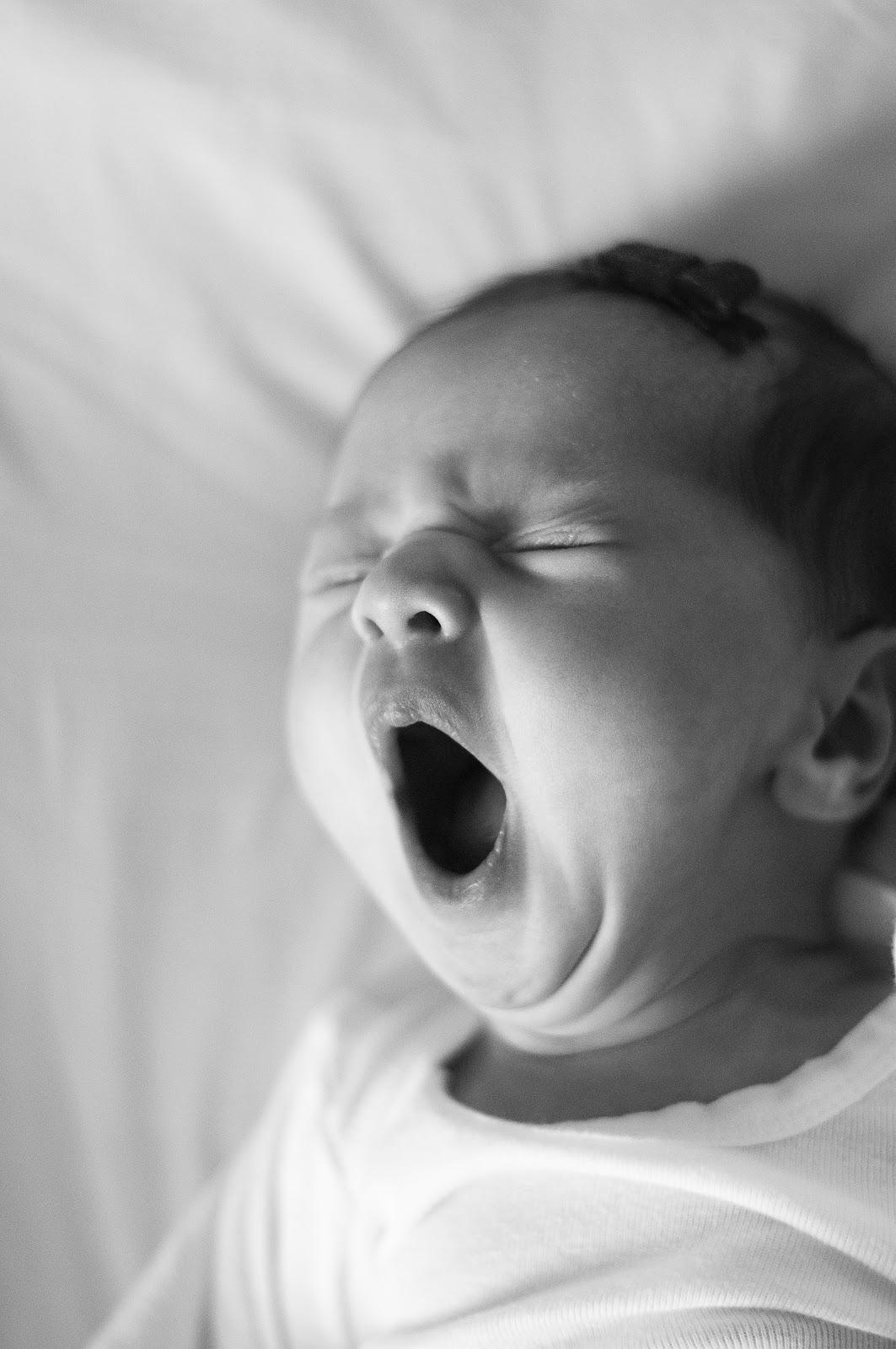 love mckenzie eleanor newborn pictures