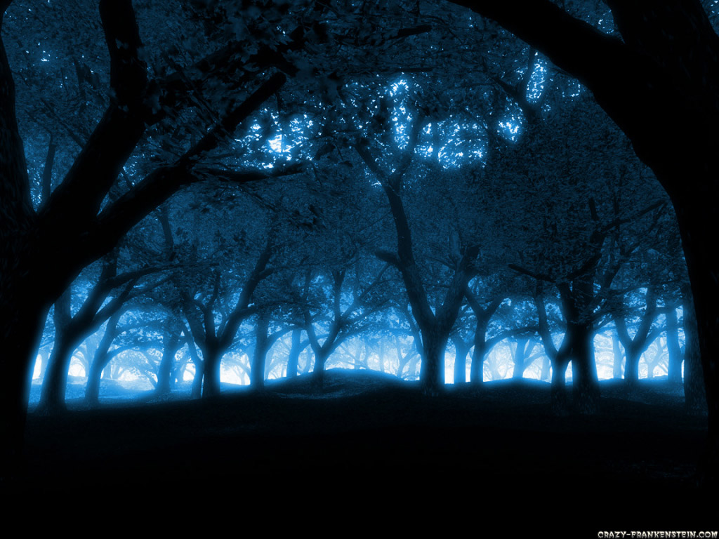 http://1.bp.blogspot.com/-l7cc-lRCytA/Txw8N2-fUEI/AAAAAAAAD0U/Ye0gle97b9E/s1600/blue-forest-wallpaper.jpg