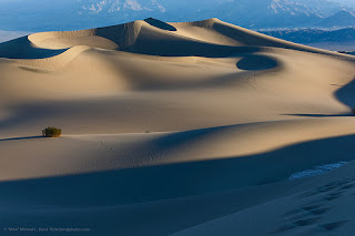 The complexity of a single sand grain far exceeds the amount of sand in a desert.