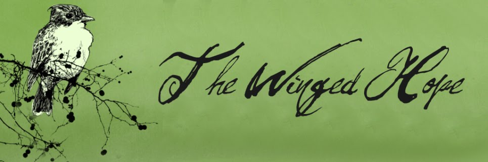 The Winged Hope