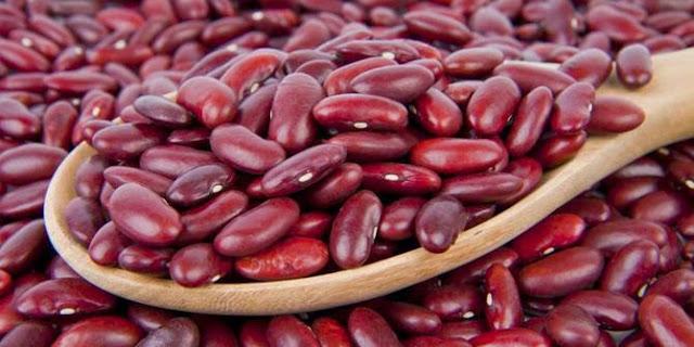 Kandungan Nutrisi dan Khasiat Kacang Merah