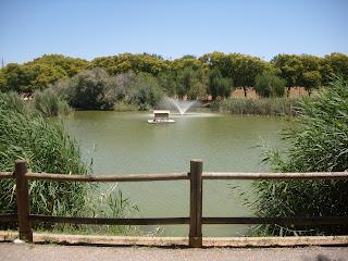 Vista del centro del lago donde hay una fuente y una casita para pájaros.