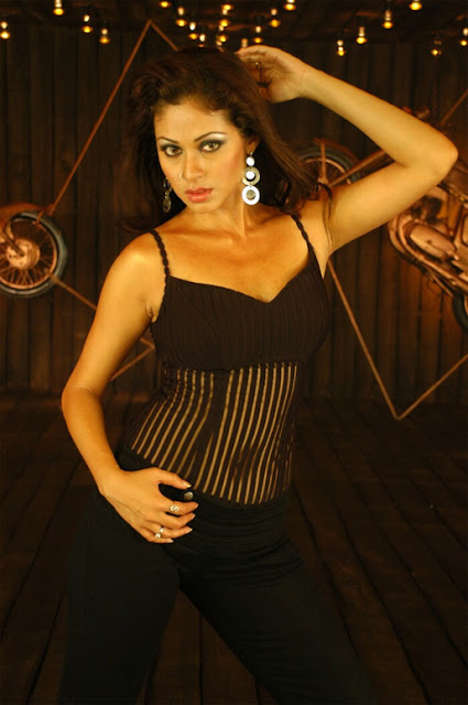 Sada Hot in Black Transparent Dress Photos