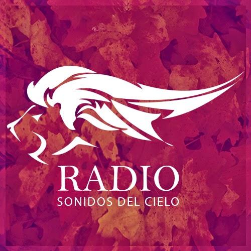 SDC Radio