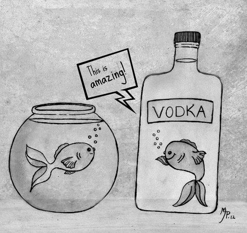 Fish on aquarium observing a fish inside a bottle of vodka being happy