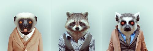 02-Artist-YAGO-PARTAL-Clothed-Animals-Lemur-Raccoon-lemur