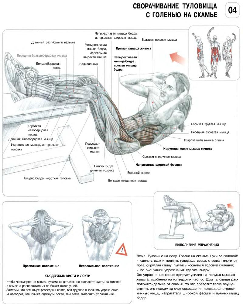 Упражнения для накачивания в домашних условий