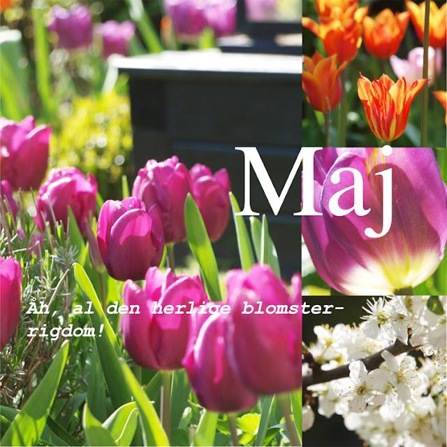 """Haveblog viser haven med tulipaner i """"Året der gik 2015"""""""