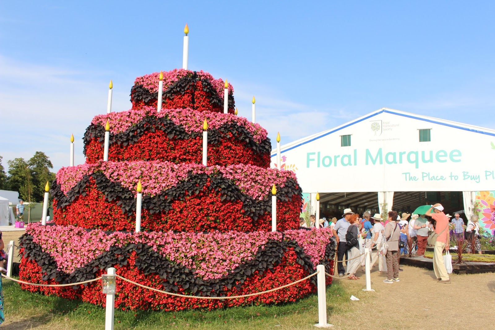 A day at rhs hampton court palace flower show flossie lane - Hampton court flower show ...