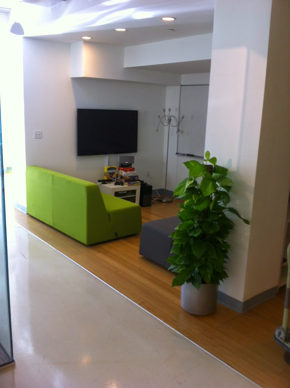 Narrow Indoor Green Lowlight Plants For Dark Restaurants Danvers, MA