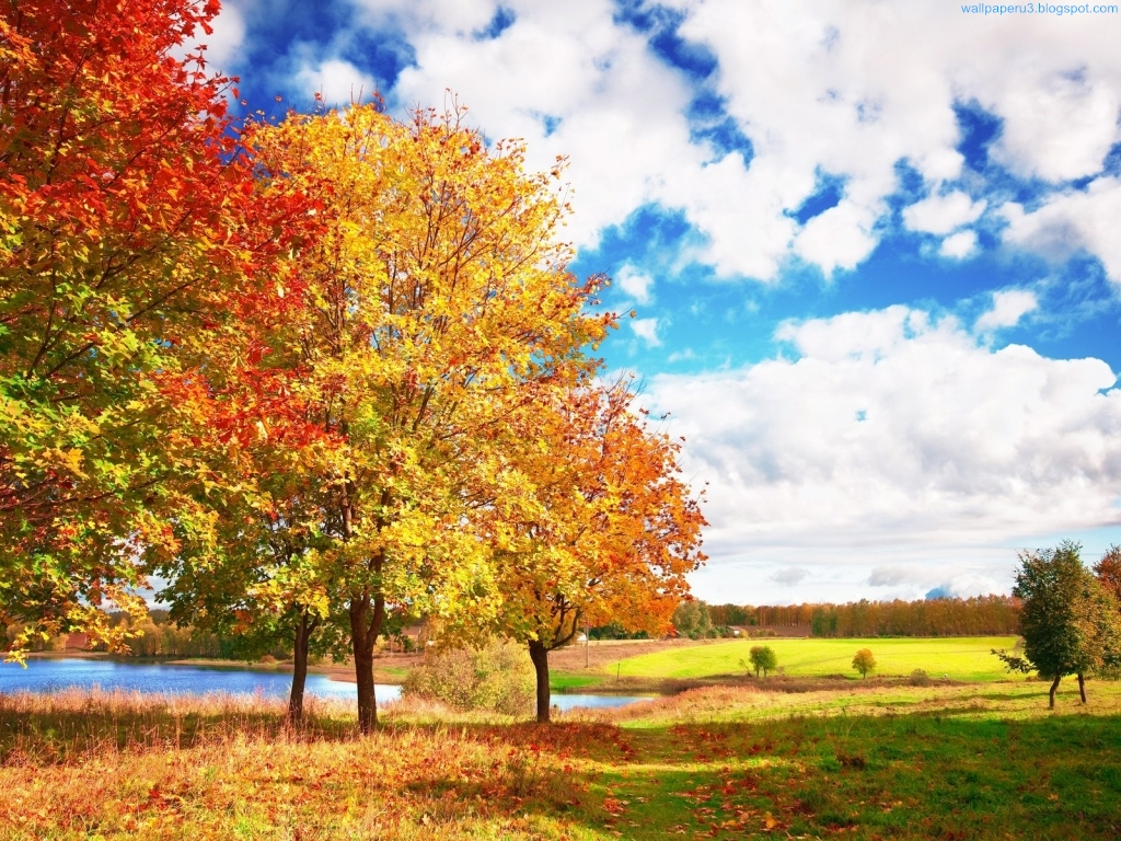Wallpaper autumn season wallpapers 2 for Fond ecran iphone nature