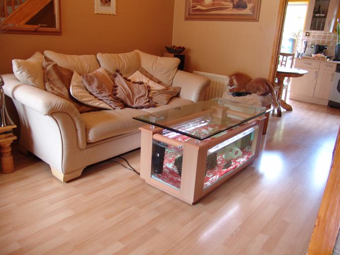 aqua fanatic unique aquariums for home decoration. Black Bedroom Furniture Sets. Home Design Ideas
