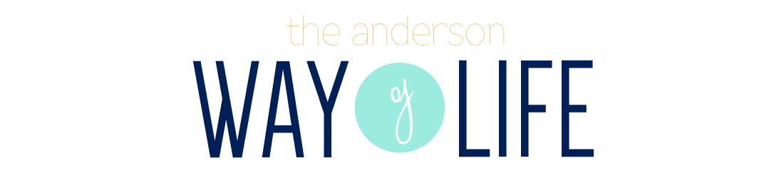 The Anderson Way of Life // Life, Ministry, and Adoption Blog