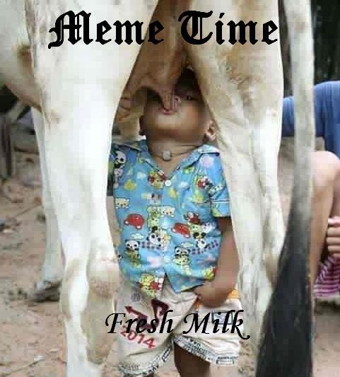 memes-fresh-milk-photo