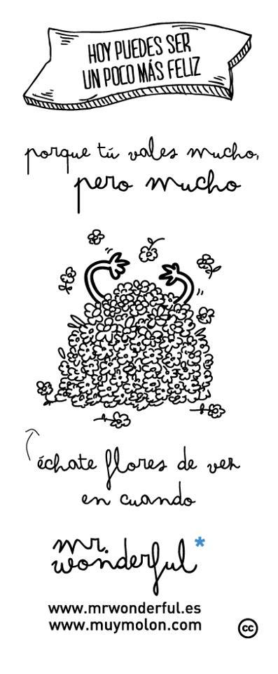 Septiembre 2013 resumiendo for Plantillas mr wonderful