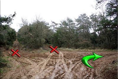 Cruce caminos / Derecha