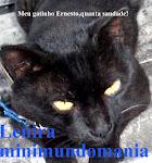 Meu Enesto(1997-2011)viveu 14 anos