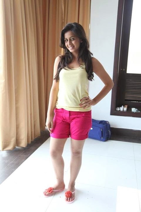 Malayalam sexy actress Nikki Gilrani