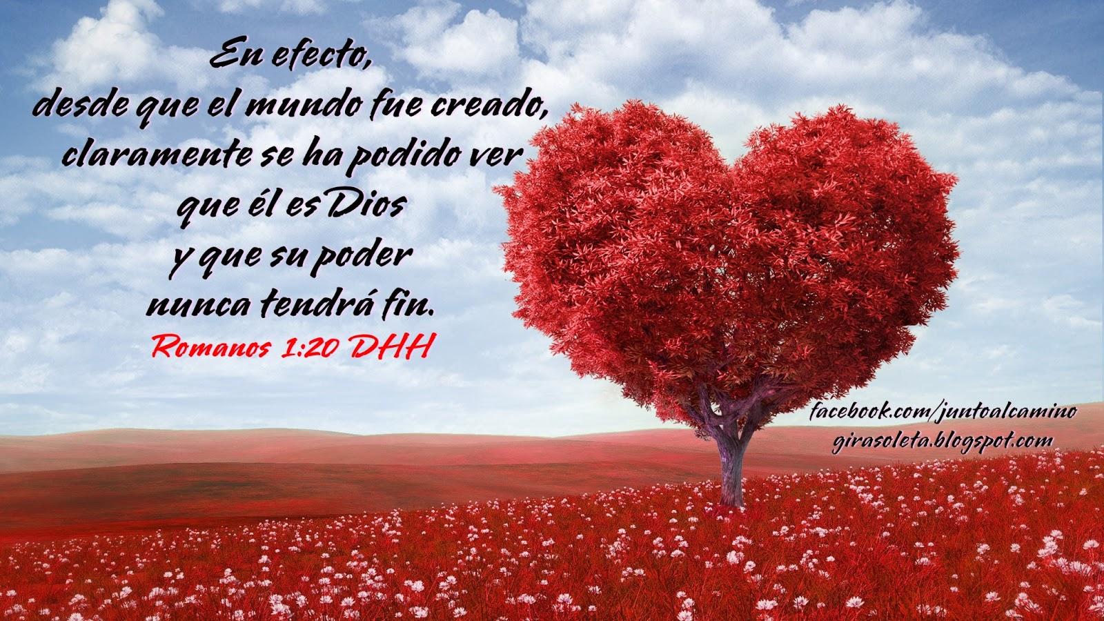 Imagenes Textos Biblicos De Agradecimiento