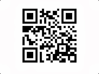 Blackberry Messenger Barcode