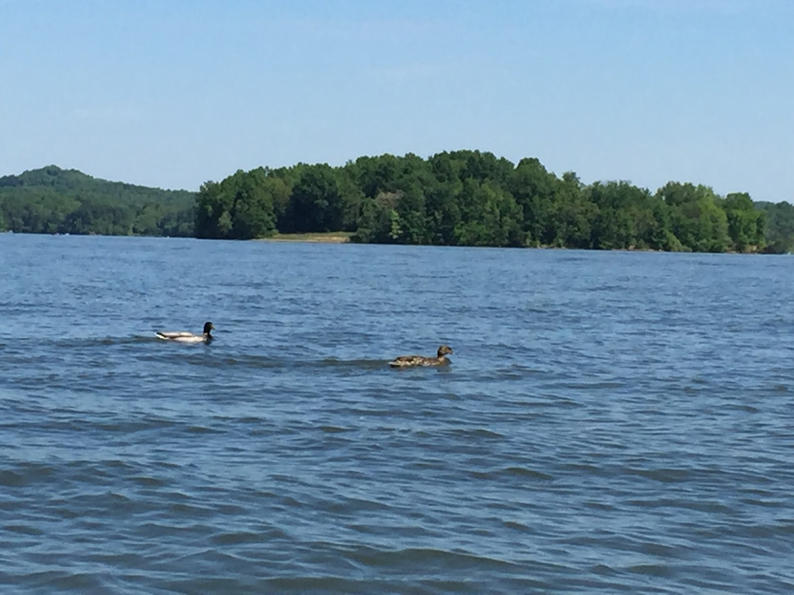 lake seneca homes cottages cabins ohio cook riverside forest cr vacation rentals cabin