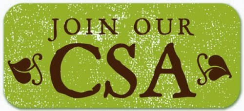 Click below to print CSA Form