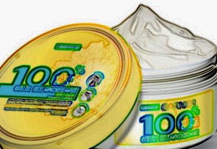 100% soleil Garnier