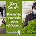 Aldığı destekle Kış Şartlarında Bozkır'da serasında sebze yetiştiriyor