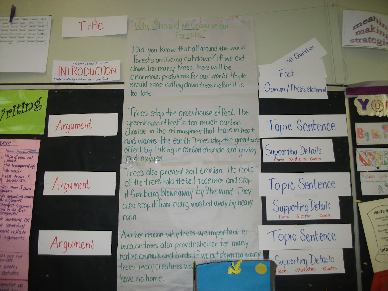 The wall argumentative essay