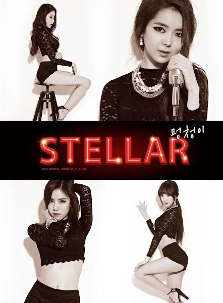 Stellar Stupid Cover
