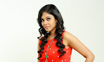 Actress Chandini latest glam pics-thumbnail